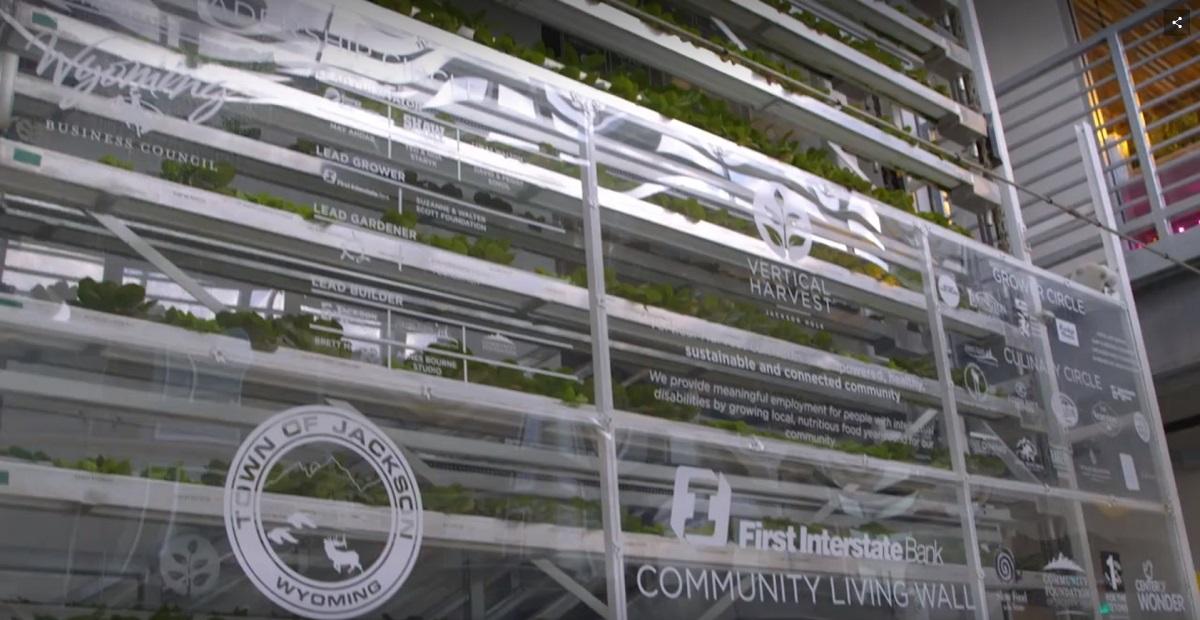 High Tech Vertical Farming Facility