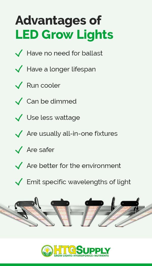 Advantages of LED Grow Lights
