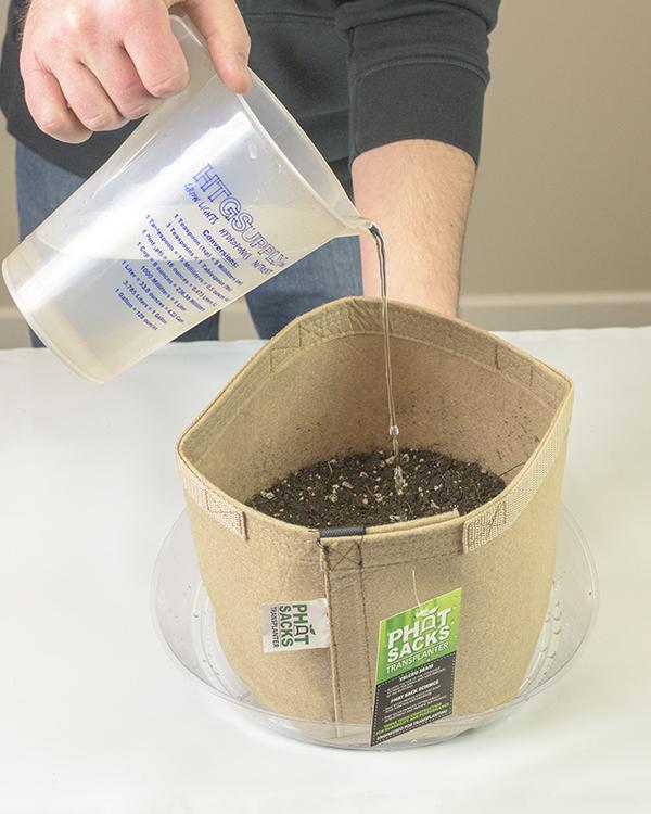 Step 3-1 - Moisten the Soil