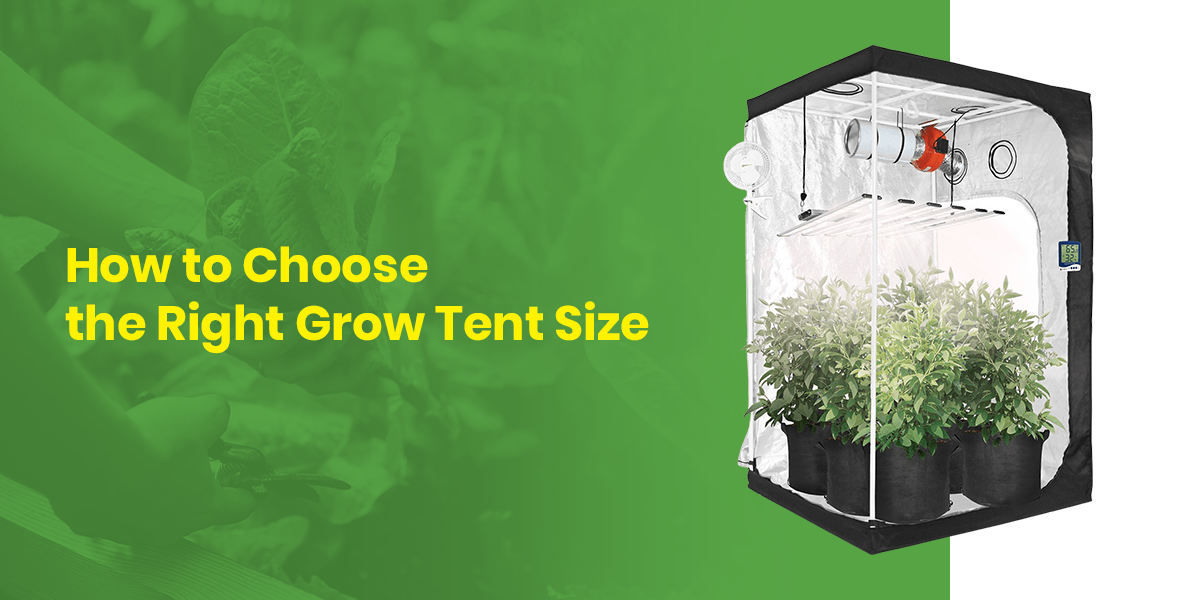 How to Choose the Right Grow Tent Size